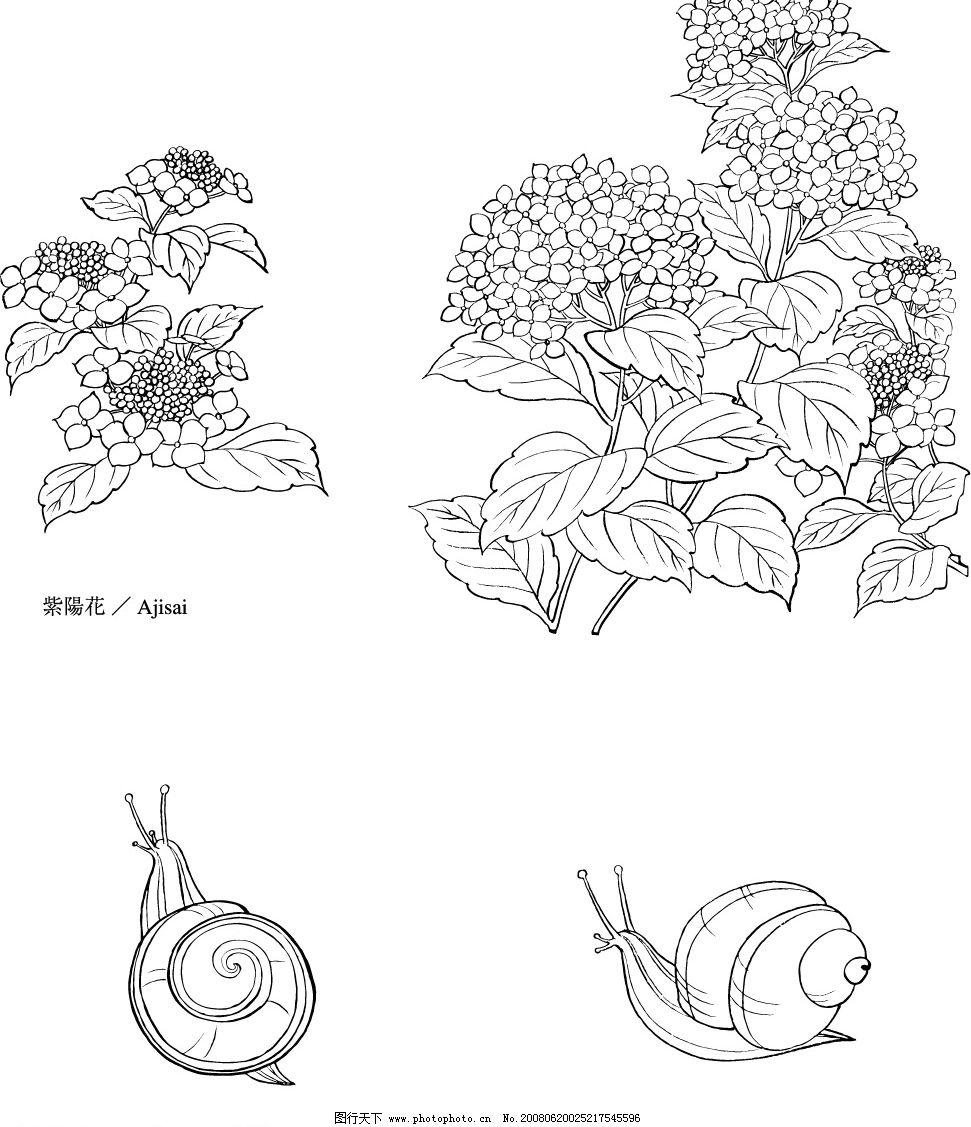 矢量白描图 矢量 白描图 工笔 植物 清晰 花草 蜗牛 动物 生物世界 树
