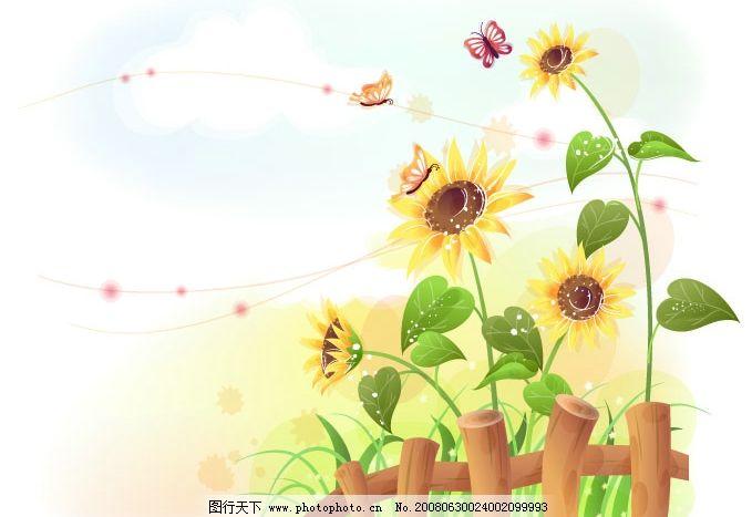 向日葵花 花 花卉